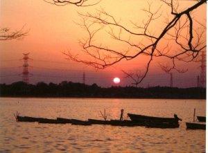 手賀沼の夕日